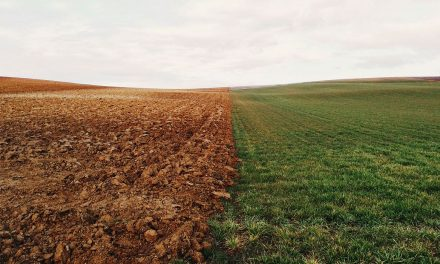 Nuevo Reglamento Europeo de Fertilizantes