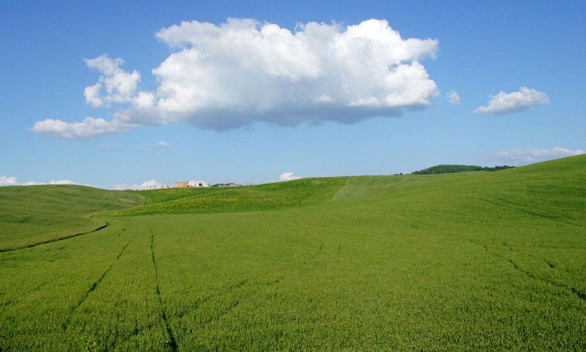 Futuro Reglamento UE de Fertilizantes y Bioestimulantes